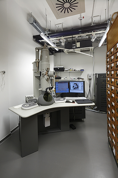 Transmission electron microscope Tecnai Spirit (FEI), 120 kV, Tomography Unit, Eagle 2k CCD camera und plate camera, (© FLI)