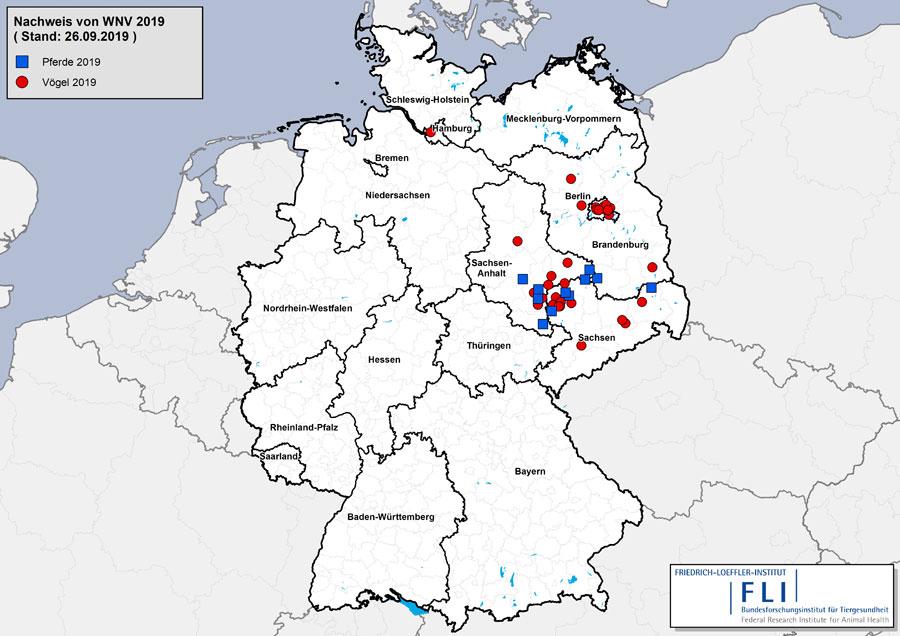 influenza karte deutschland Erste Infektion mit West Nil Virus beim Menschen in Deutschland
